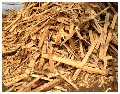 smaltimento e distruzione legno
