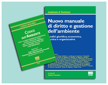 codice ambientale